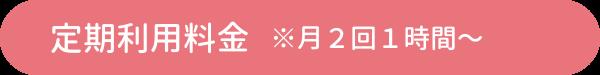 定期利用料金※月2回1時間〜